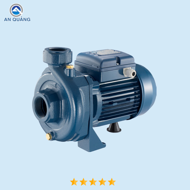 Máy bơm nước Pentax CRT 100 - Pentax Italy (1Hp)
