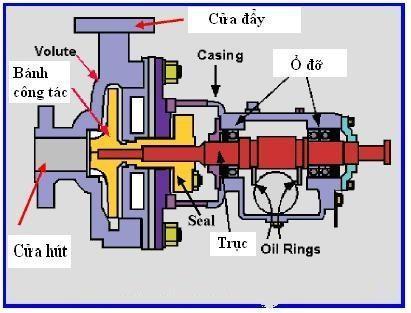 mô hình hoạt động của máy bơm nước