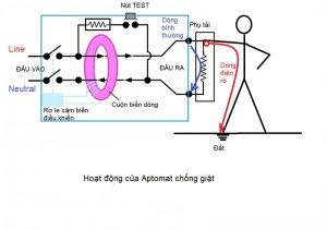 Aptomat chống giật cho phao điện máy bơm nước