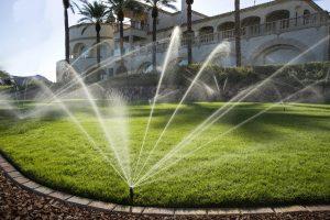 Sử dụng hệ thống máy bơm nước tưới cây bằng béc